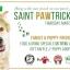 Saint Pawtrick's Day