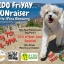 Pints & Paws: FIDO FriYAY FUNraiser at Little Miss Brewing
