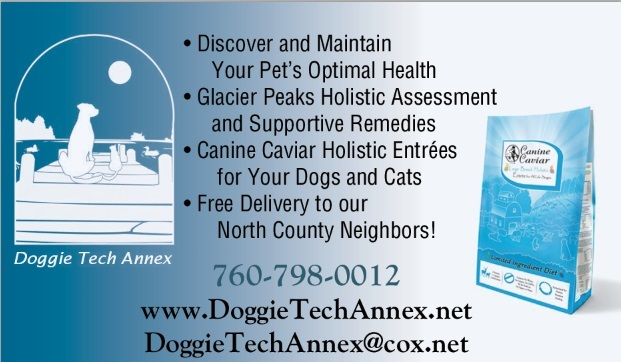 doggie_tech_ad__final